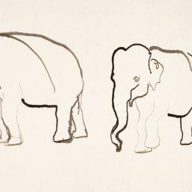 Series elephant