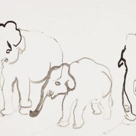 Sorozat Elefánt