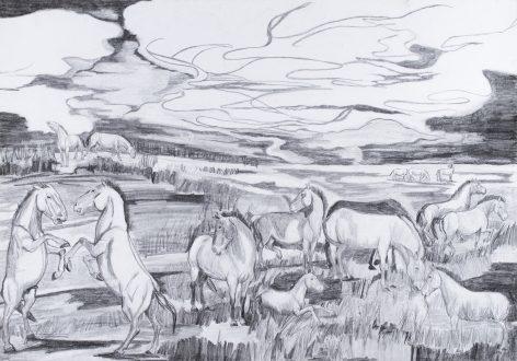 Series Equus