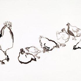 Series Chicken