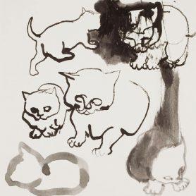 Series Cat