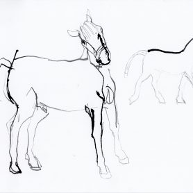 Series Horse