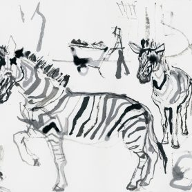 Series zoo